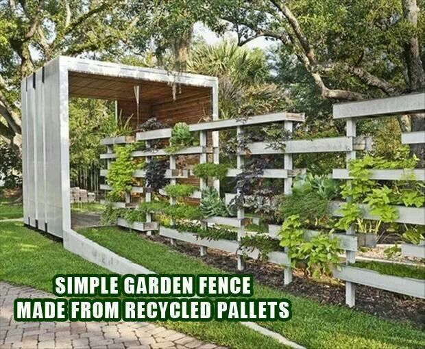 Garden fence made from pallets flowers gardening yard - Reusing pallets in the garden ...
