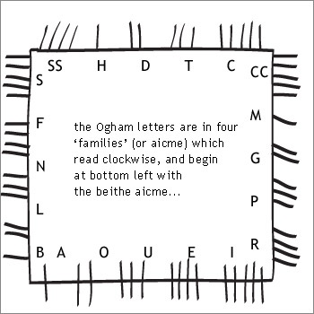 Pin By Celestial Elf On Ogham Trees