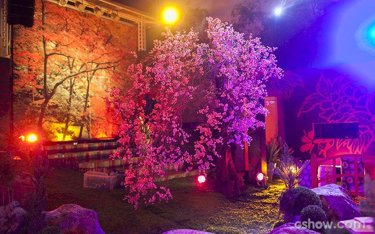 Decoração  Festa Jardim Japonês  Fotos do Big Brother Brasil 14