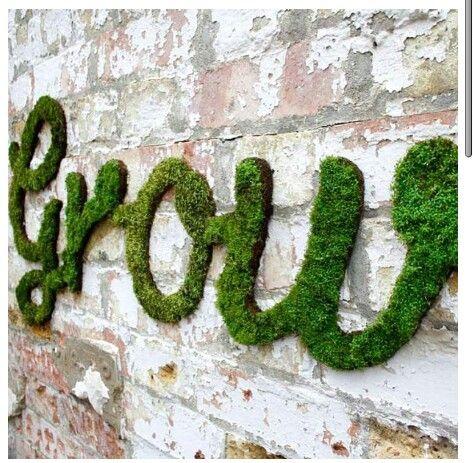 Moss Grown Wall Art Eco Art Pinterest