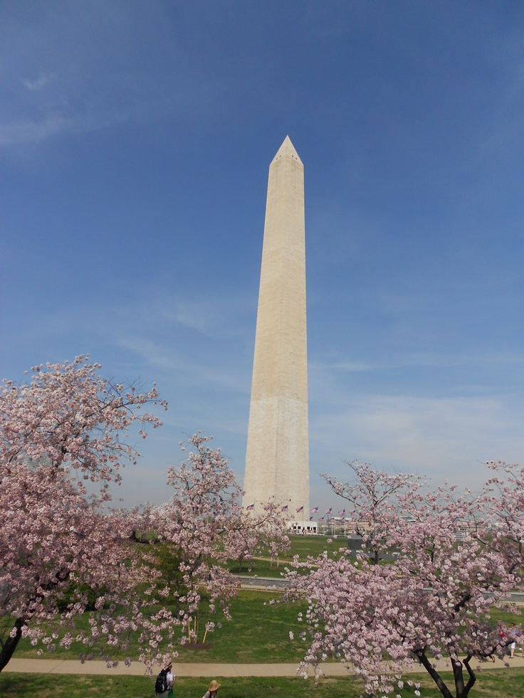 Washington Monument, Washington DC | fun travels | Pinterest