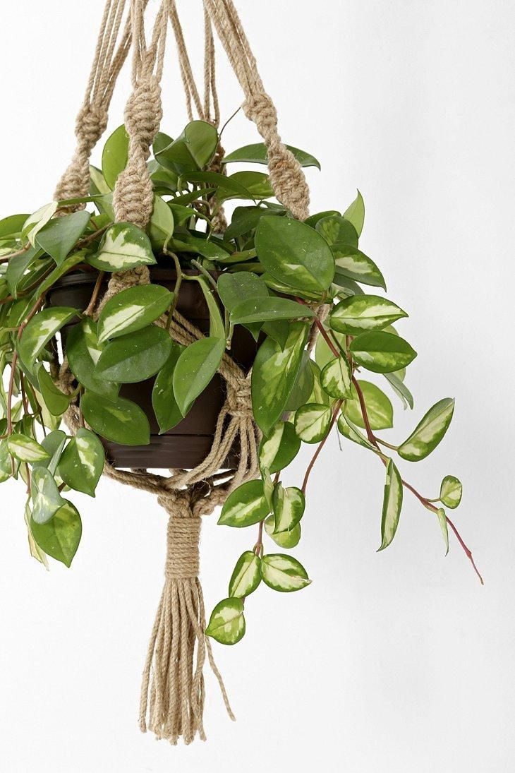 Magical Thinking Hand Knotted Hanging Plant Holder