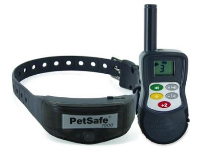 Training A Deaf Dog With A Vibrating Collar