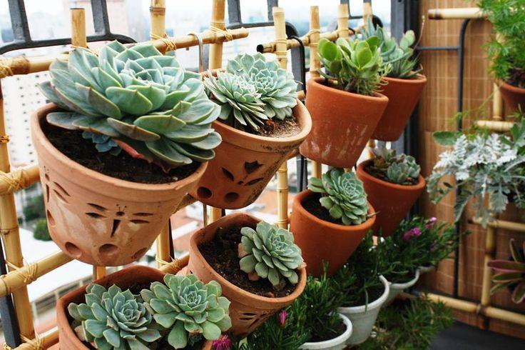 plantas para jardim muito sol:Jardim vertical em varanda de cobertura, em Pinheiros/SP. Plantas de