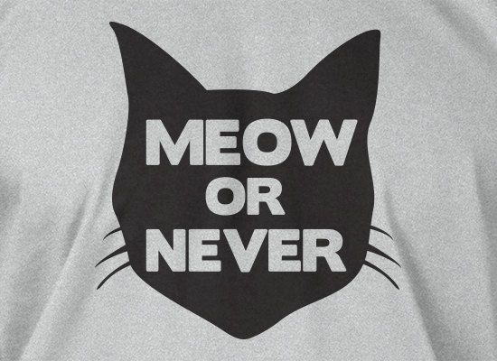 Funny Cat TShirt Kitty TShirt Cats TShirt Meow or by IceCreamTees, $14.99