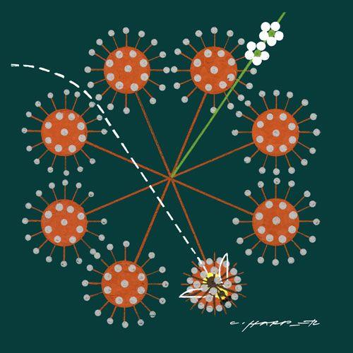Flower 39 s feast charley harper pinterest for Charley harper mural