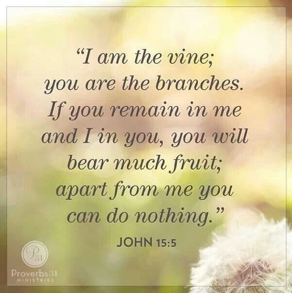 john 155 i am the vine you are the branches if you auto