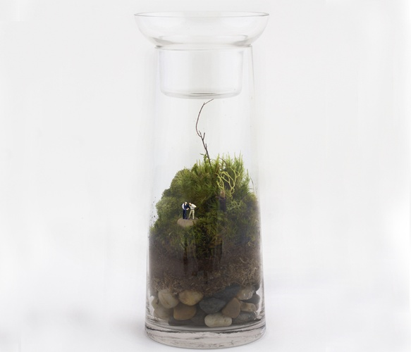 Question for you guys: Terrariums, do you like them and if so why? I'm not to sure... Convince me!!! // pejper