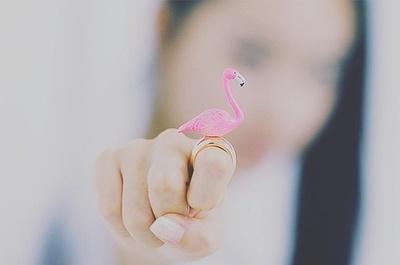 flamingo ring