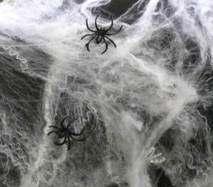 Web Decor: Halloween Party Decoration