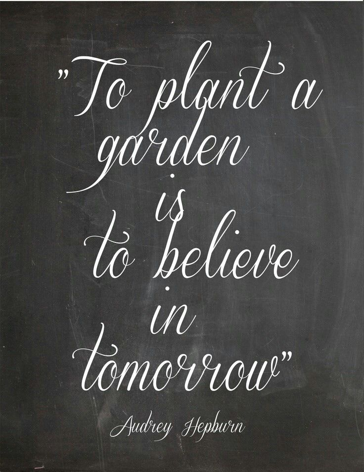 """To plant a garden is to believe in tomorrow"" 