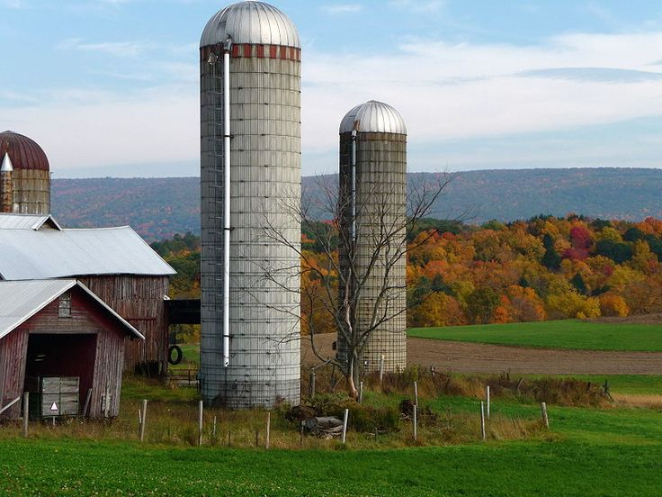 Brunswick farm Autumn New York
