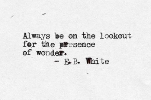 E B. White Books