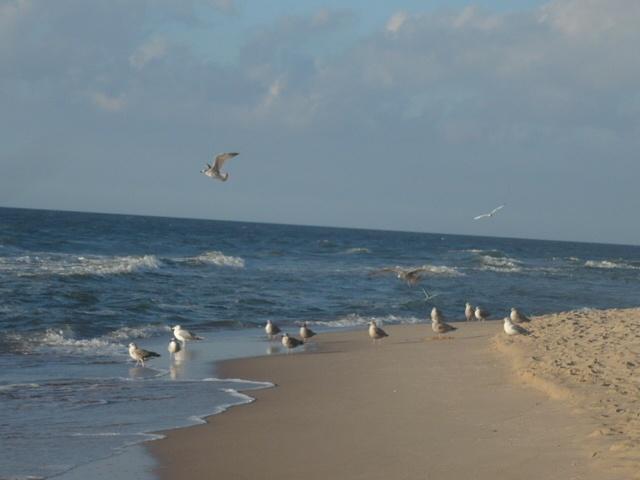 Baltic Sea, Poland. Baltic Sea Pinterest