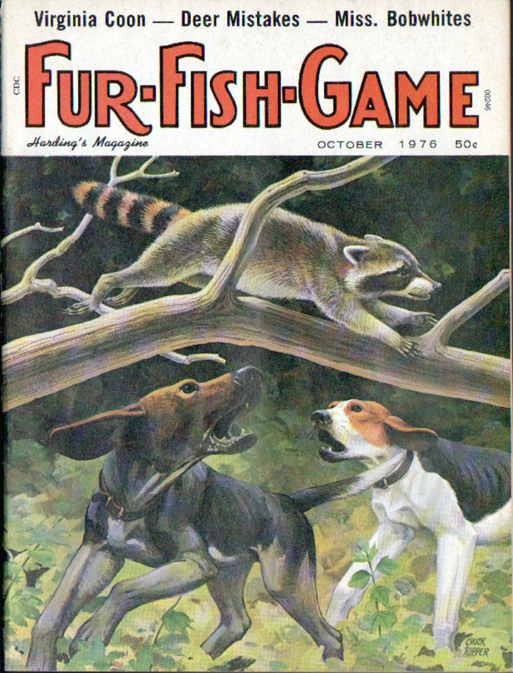 Oct 1976 fur fish game magazine cover by chuck ripper ebay for Game and fish magazine