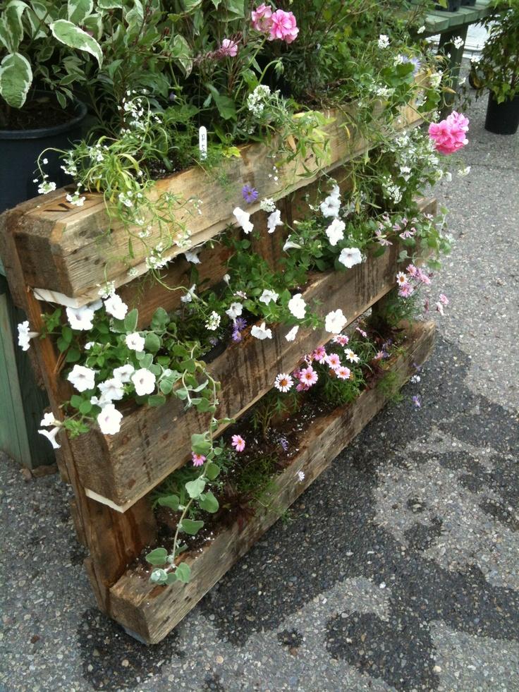 palette planter by me garden deck pinterest. Black Bedroom Furniture Sets. Home Design Ideas