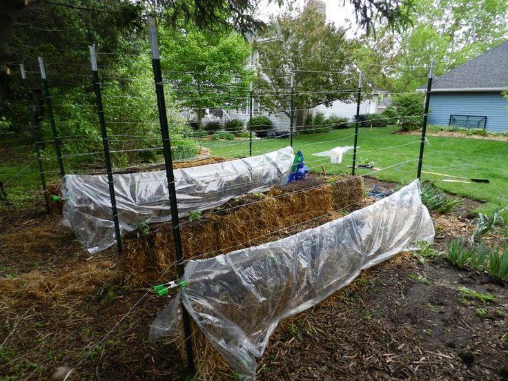 Supports Gardening straw bale Pinterest