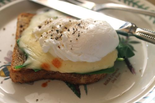 poached egg with Swiss cheese, spinach, & hot sauce on low carb ...