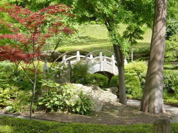 Fort worth botanic garden family activities nearby for Jardin japonais 78