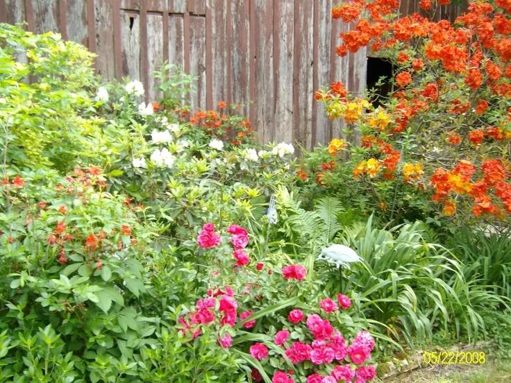 Part shade garden part of the shade garden a photo on for Part shade garden designs