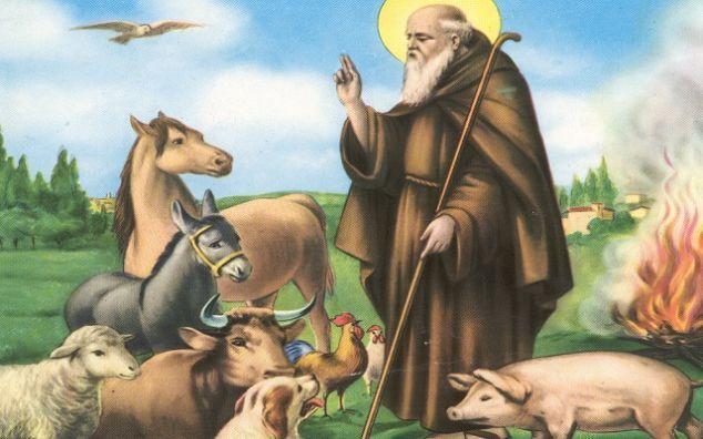 sant antonio abate www paroladiugo it pinterest