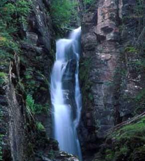 TN falls