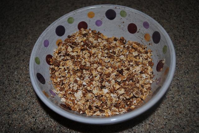 cinnamon apple granola   Recipes from Sumo and Chandler's Spaghettihe ...