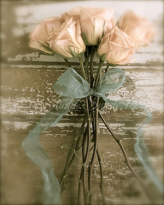 ... Photography, Rose Photography, Still Life, Shabby Chic Art, Rustic