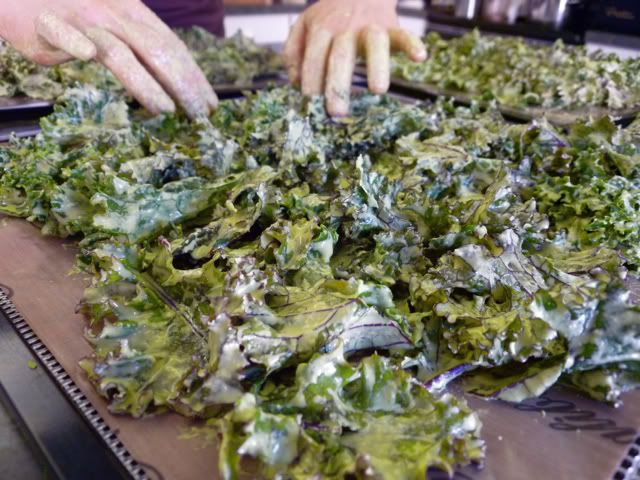 Kale chips with sesame tahini, lemon, herbs, and spices