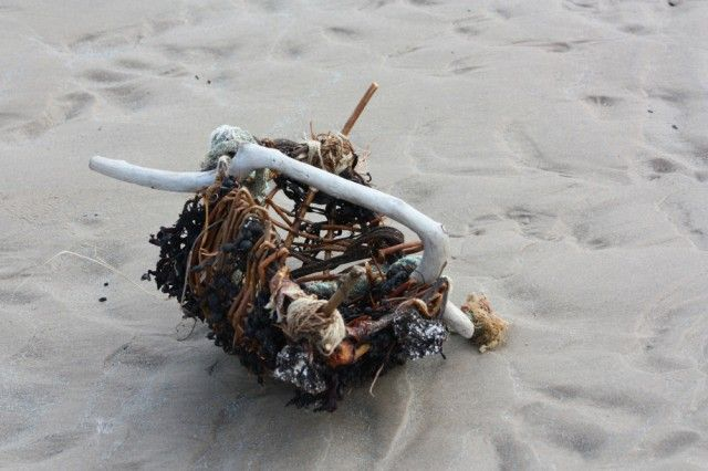 A creation of found objects from the beach