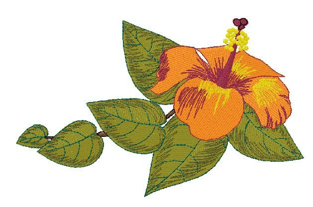 FREE embroidery designs | Embroidery Designs | Pinterest