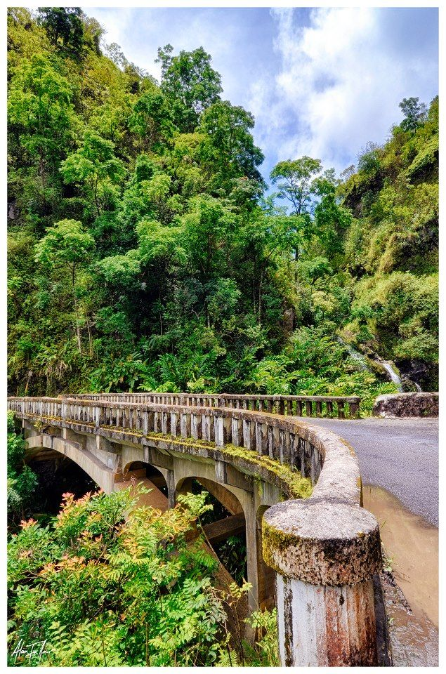 The Road to Hana, Maui, Hawaii.This was the scarest car ride I have ever been on but it was WELL WORTH the stress..Beautiful waterfalls all the way through the rain forest..