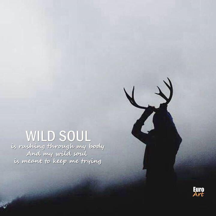 eurovision 2014 moldova wild soul