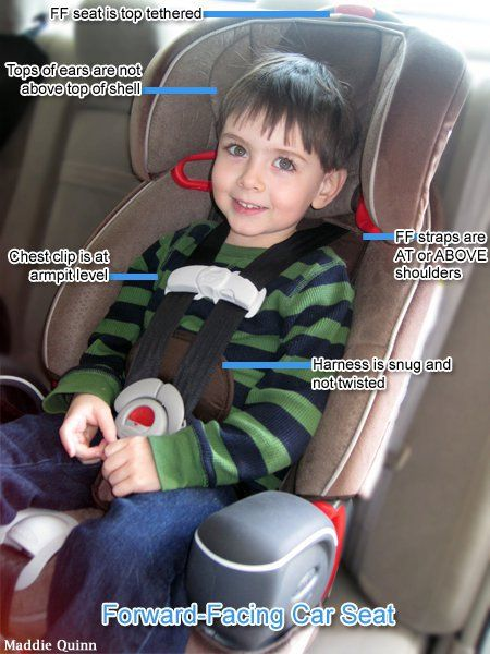 Correct Car Seat For  Year Old