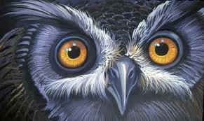 owl eyes in great gatsby