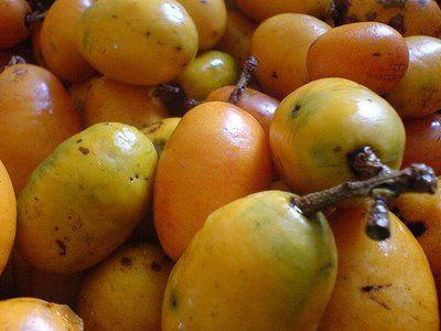 Brazilian Passion Fruit Mousse (Maracuja) Recipe — Dishmaps