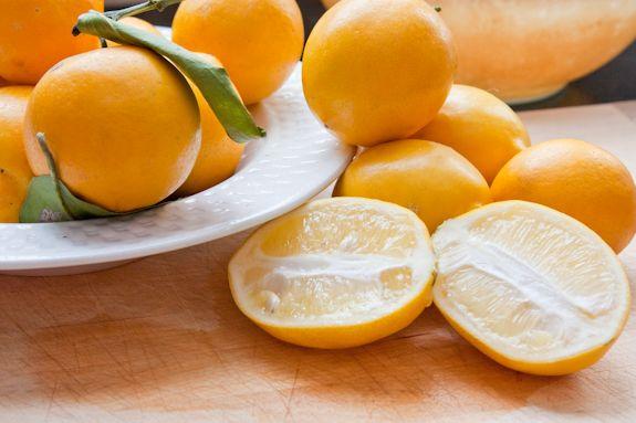 Preserved Meyer Lemons | Recipe