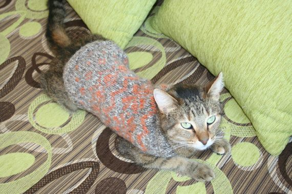 Knitting Pattern For Cat Sweater : Knit Cat/Dog Sweater with Jacquard Pattern