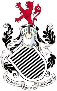 Queen 39 s park fc football badges pinterest