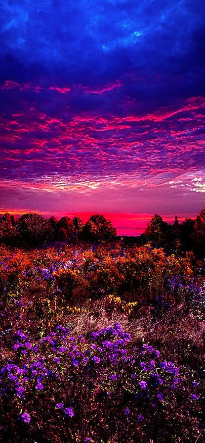 Sunrise in Wisconsin • photo: Phil Koch on Fine Art America DANNNNG , @Melissa Wiesner  when do I get to visit with you?