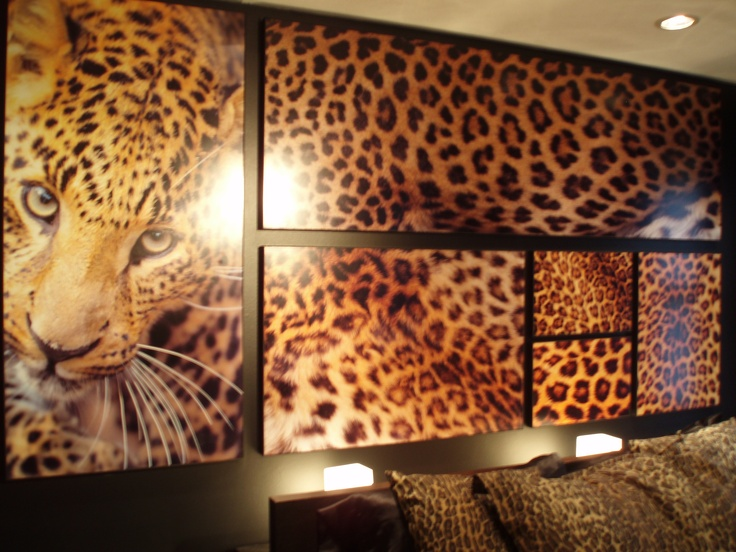 Leopard print wall it s 4 x8 and looks great on the black accent wall