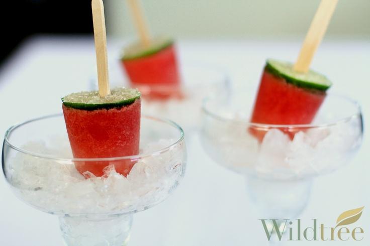 Watermelon Margarita Pops! www.Facebook.com/wildtreeofficial