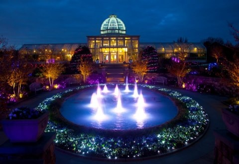Pin by ann tate on christmas pinterest for Lewis ginter botanical gardens christmas