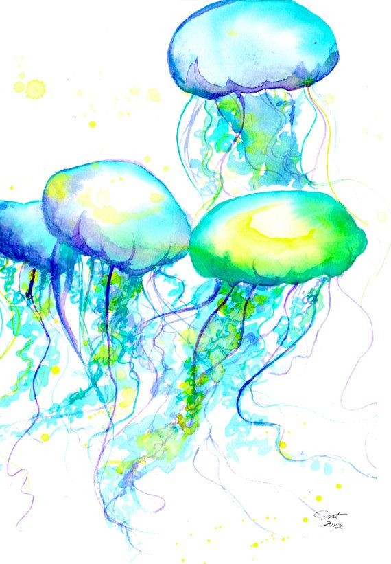 Print from original watercolor painting jellyfish by ...