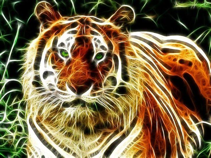 Green tiger eyes - photo#27