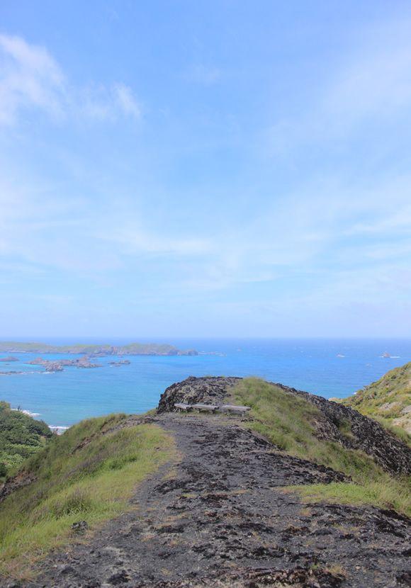 小笠原諸島の画像 p1_7