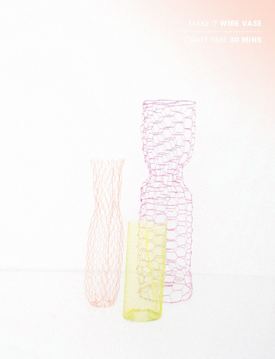 DIY / colored wire vases!