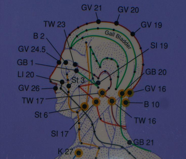the nervous system michael-titus pdf