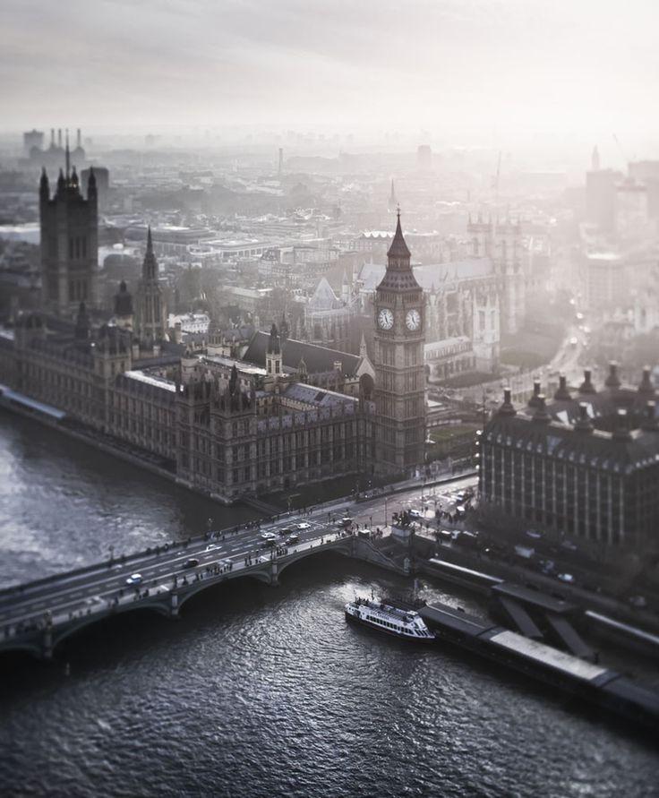 (London) Birdseye by Alisdair Miller