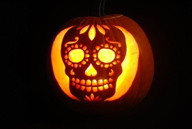 Cute little sugar skull jack o lantern halloween